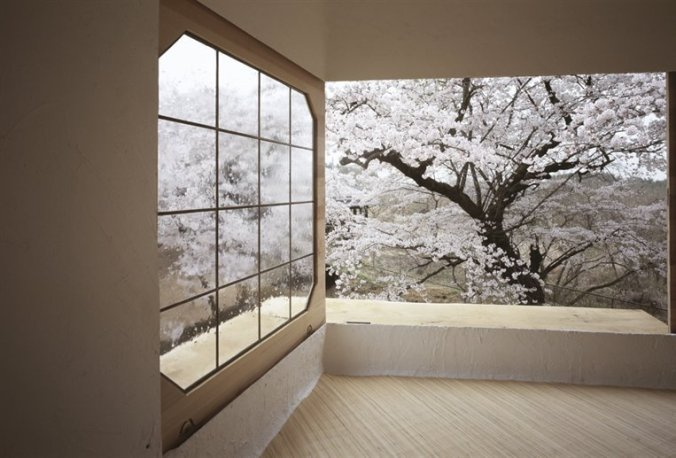 treehouse-in-hokuto-city_japan-2